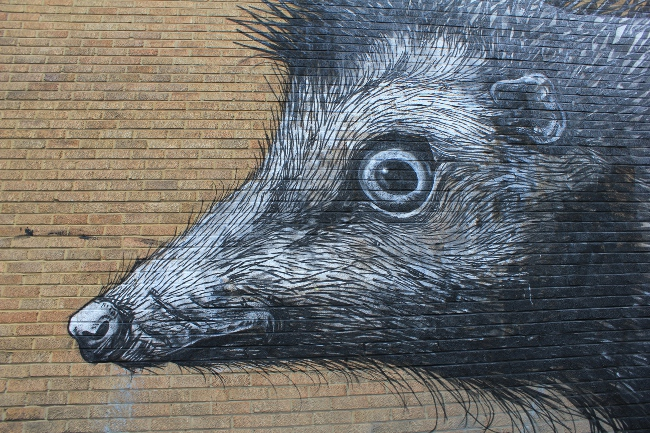 Roa Street Art in East London