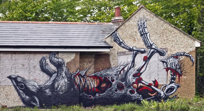 ROA-Chichester-Street-Art-Festival3_1