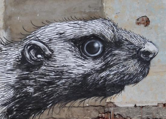 Roa Beaver Hackney