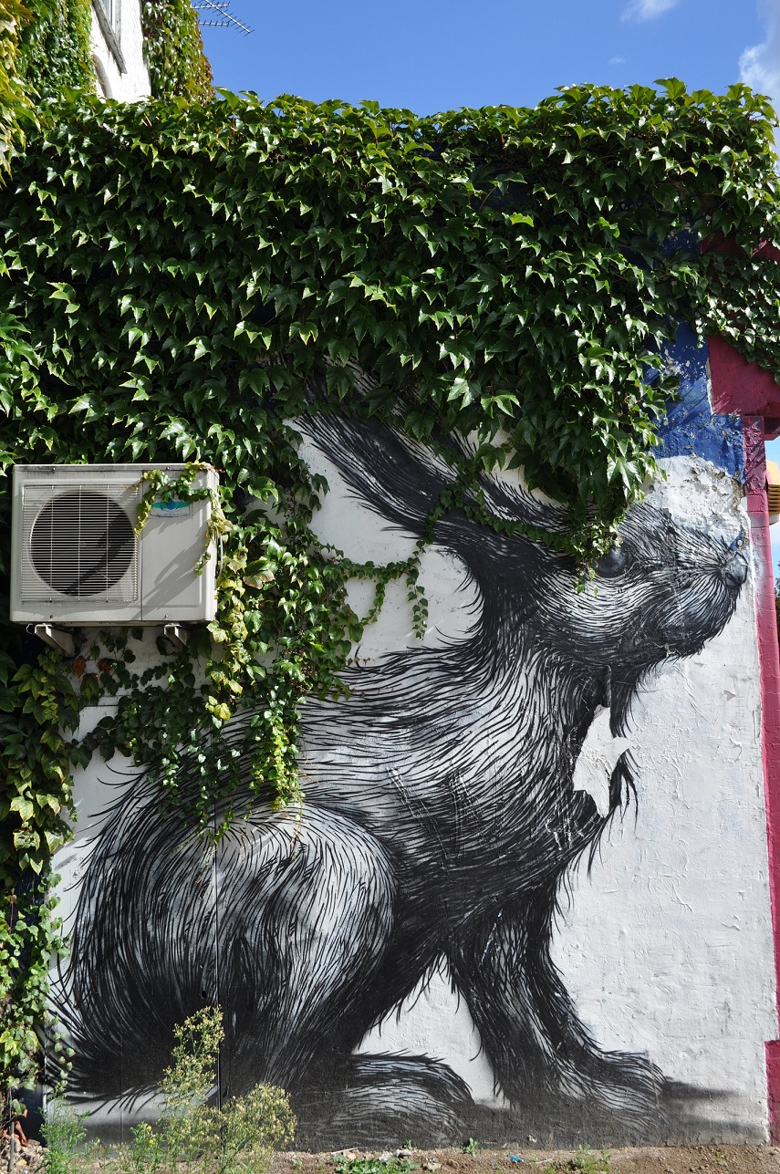 Roa Rabbit Hackney