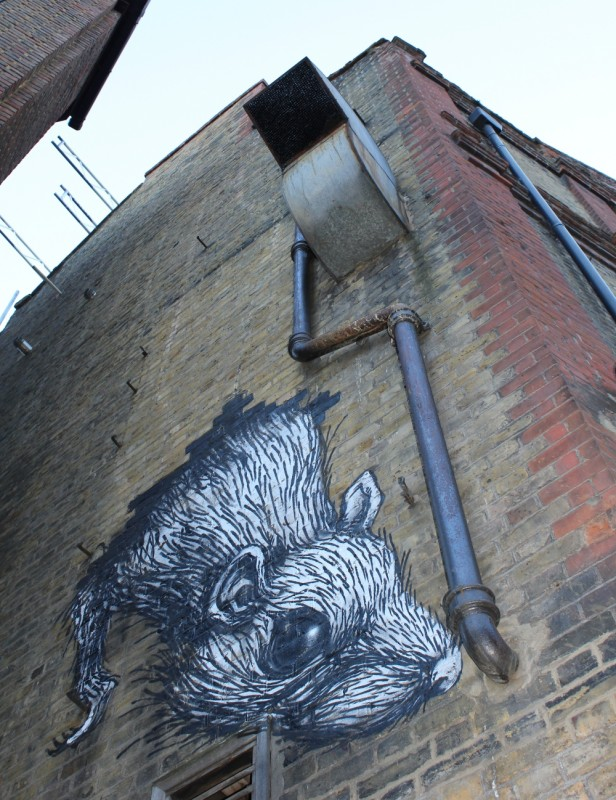 Roa Street Artist Rat London